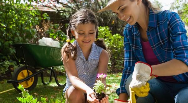 Gartenarbeit-im-Februar-Beete-B-ume-Co-fr-hlingsfit-machen_22022021_4800x2632