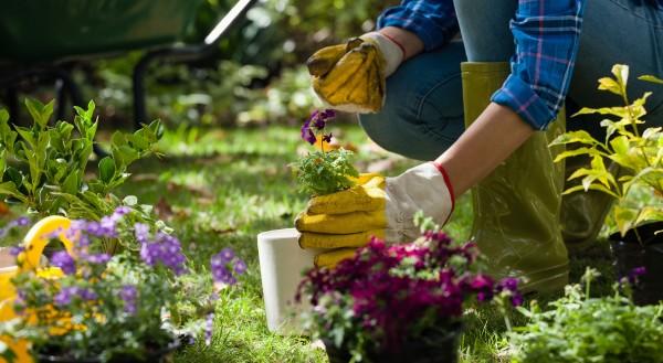 Gartenarbeit-im-M-rz_25032021_5400x29610ylAvtosyLpcS